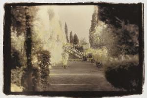 Formal Garden view by Theo Westenberger