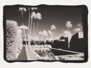 Palm Springs 6 by Theo Westenberger