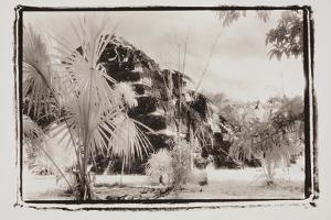 Pryamid and Palms, Guatemala by Theo Westenberger