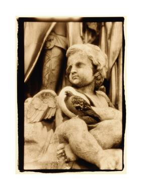 Putti and Pigeon, Opera House, Paris by Theo Westenberger