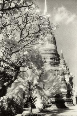 Temple View 1, Agutthaya, Thailand by Theo Westenberger