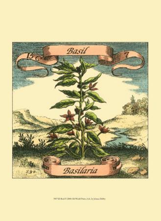Basil by Theodor de Bry