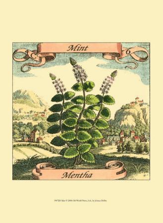 Mint by Theodor de Bry