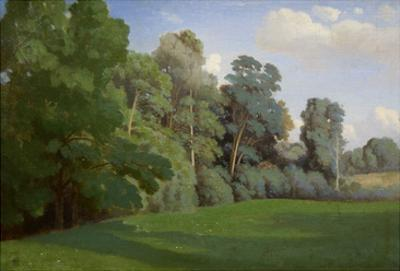 Study of Trees at Mortefontaine by Theodore Caruelle D' Aligny