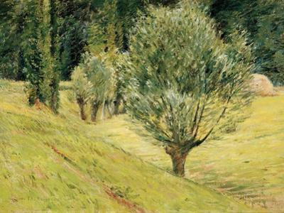 The Edge of the Forest, C.1887-92