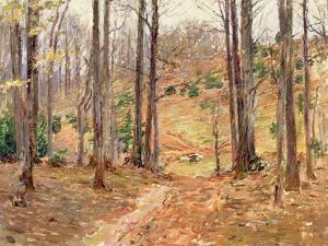 Virginia Woods, 1893 by Theodore Robinson