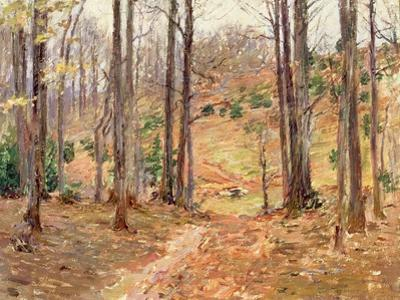 Virginia Woods, 1893