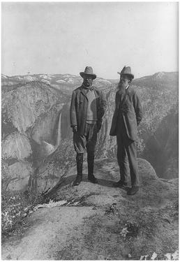 Theodore Roosevelt with John Muir Archival Photo Poster Print