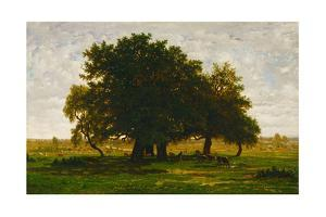 A group of oaktrees, Apremont, France. 1855 Canvas, 63,5 x 99,5 cm R. F. 1447. by Theodore Rousseau