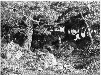 Les Chenes De Roche, C1832- 1860 by Theodore Rousseau