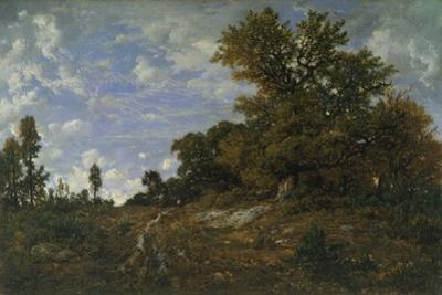 The Edge of the Woods at Monts-Girard, Fontainebleau Forest, 1852-54 by Theodore Rousseau