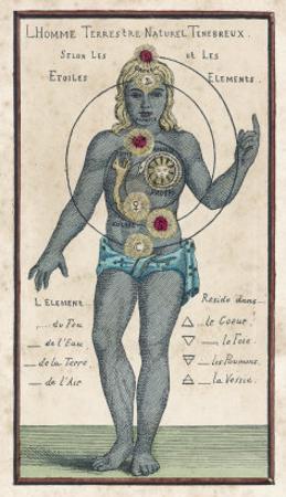 Theosophy Chakras 1696