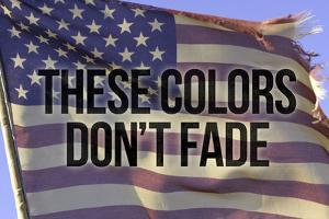 These Colors Dont Fade American Flag