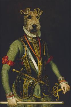 Sir Francis by Thierry Poncelet