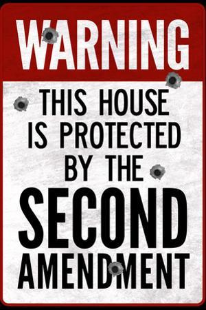 This House Protected By the Second Amendment Poster