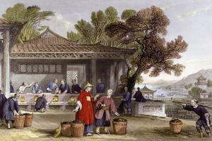 Tea Culture Preparation by Thomas Allom