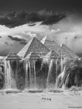 Camel Wash Station by Thomas Barbey