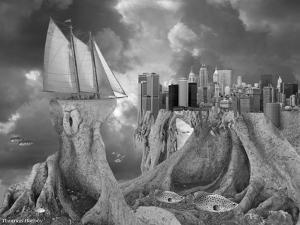 Fish out of Water by Thomas Barbey