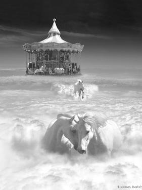 Horsing Around Vertical by Thomas Barbey
