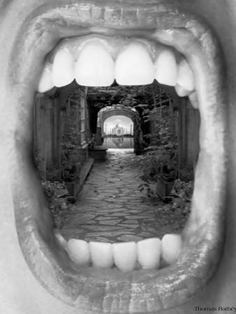 Inner Beauty by Thomas Barbey