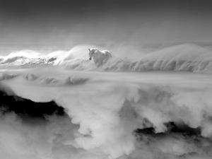 Night... Mare by Thomas Barbey
