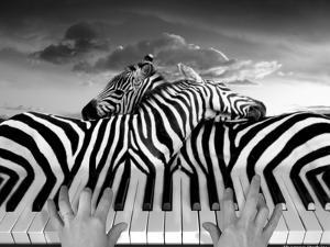 Piano Peace by Thomas Barbey