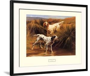 English Setters in a Marshland by Thomas Blinks