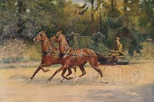 Trotting pair of Walter Winans, 1900 (c1910) by Thomas Blinks