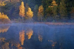Germany, Schleswig-Holstein, Lauenburg Lakes Nature Park, Grundloser Kolk by Thomas Ebelt