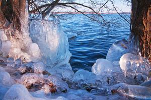 Winterimpression Am Schaalsee by Thomas Ebelt