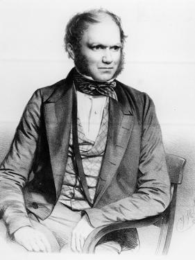 Charles Darwin, 1849 (Litho) by Thomas Herbert Maguire
