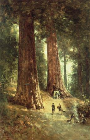In the Redwoods, 1899 by Thomas Hill
