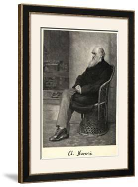 Charles Darwin English Naturalist Sitting in a Chair by Thomas Johnson