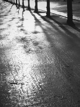 Sunlight reflecting on wet road by Thomas Kruesselmann