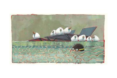 Pool Birds