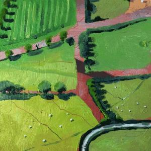 View over Safron Walden or Thaxted by Thomas MacGregor