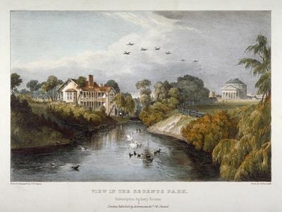View in Regent's Park, St Marylebone, London, C1830