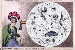 Monster Soup Commonly Called Thames Water..., 1828 by Thomas McLean