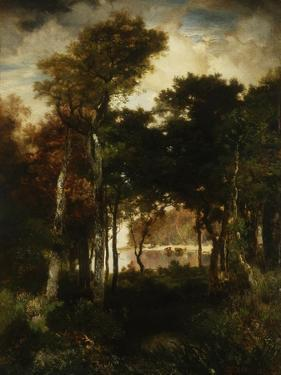 Woods by a River, 1886 by Thomas Moran