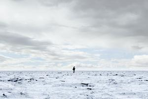 Man Standing in Middle of Salt Flats. by Thomas Northcut
