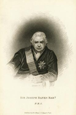 Engraving after Sir Joseph Banks, Bt by Thomas Phillips