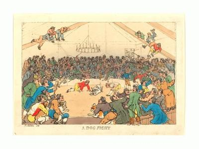 A Dog Fight, 1811 by Thomas Rowlandson