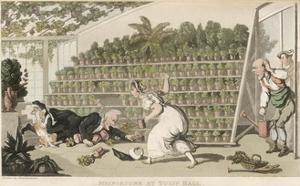 Dr Syntax, Misfortune at Tulip Hall by Thomas Rowlandson