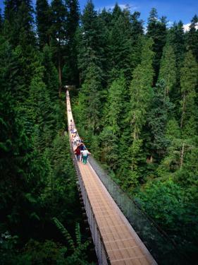 Capilano Suspension Bridge Crossing the Capilano River, Vancouver, British Columbia, Canada by Thomas Winz