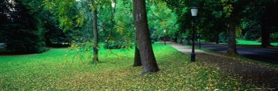 Park with Autumn Leaves Scattered on the Lawn, Baden-Baden, Baden-Wurttemberg, Germany