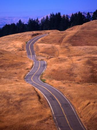 Winding Road at Mount Tamalpais, California, USA by Thomas Winz