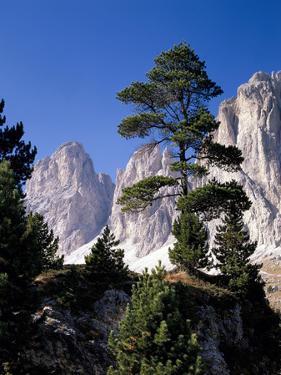 Ialien, Sv¼dtirol, Dolomiten, Langkofelgruppe, AuvŸen, Berglandschaft, Berge by Thonig