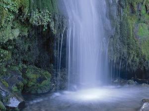 New Zealand, North Island, Mt.Taranaki National Park, Dawson Falls, Waterfall by Thonig