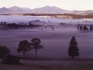 Scenery Near Fuessen, AllgŠu Alps, Morning Fog by Thonig