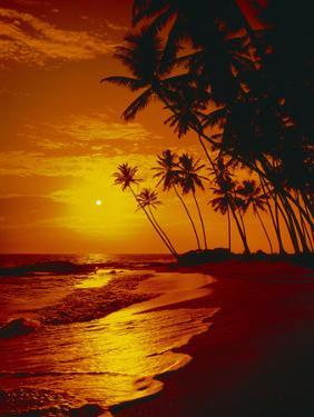 Sea, Coast, Surge by Thonig